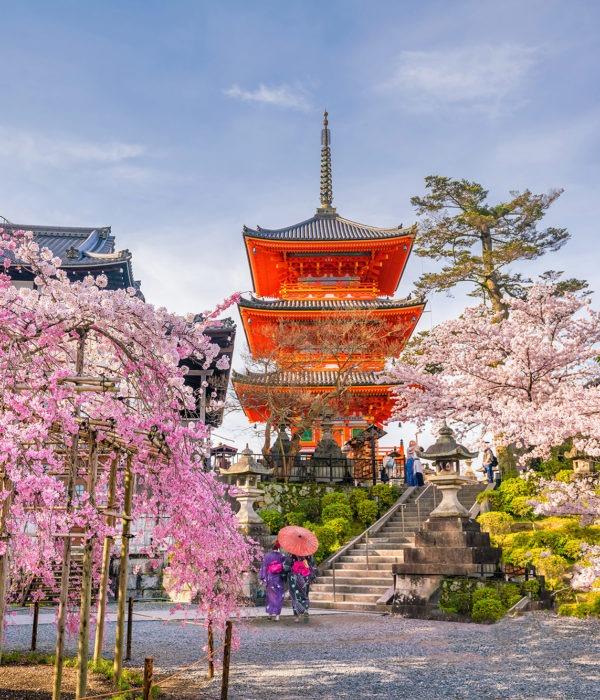 voyage organisé au japon