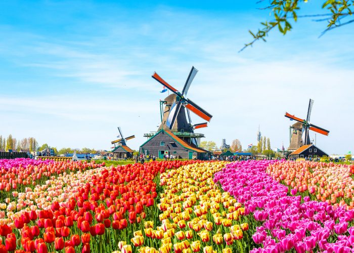 voyage organisé Pays Bas