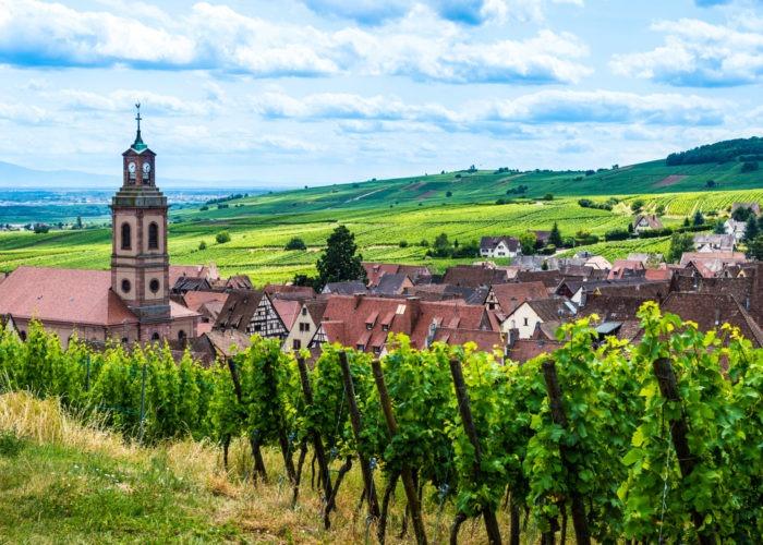 Voyages organisés Route des vins