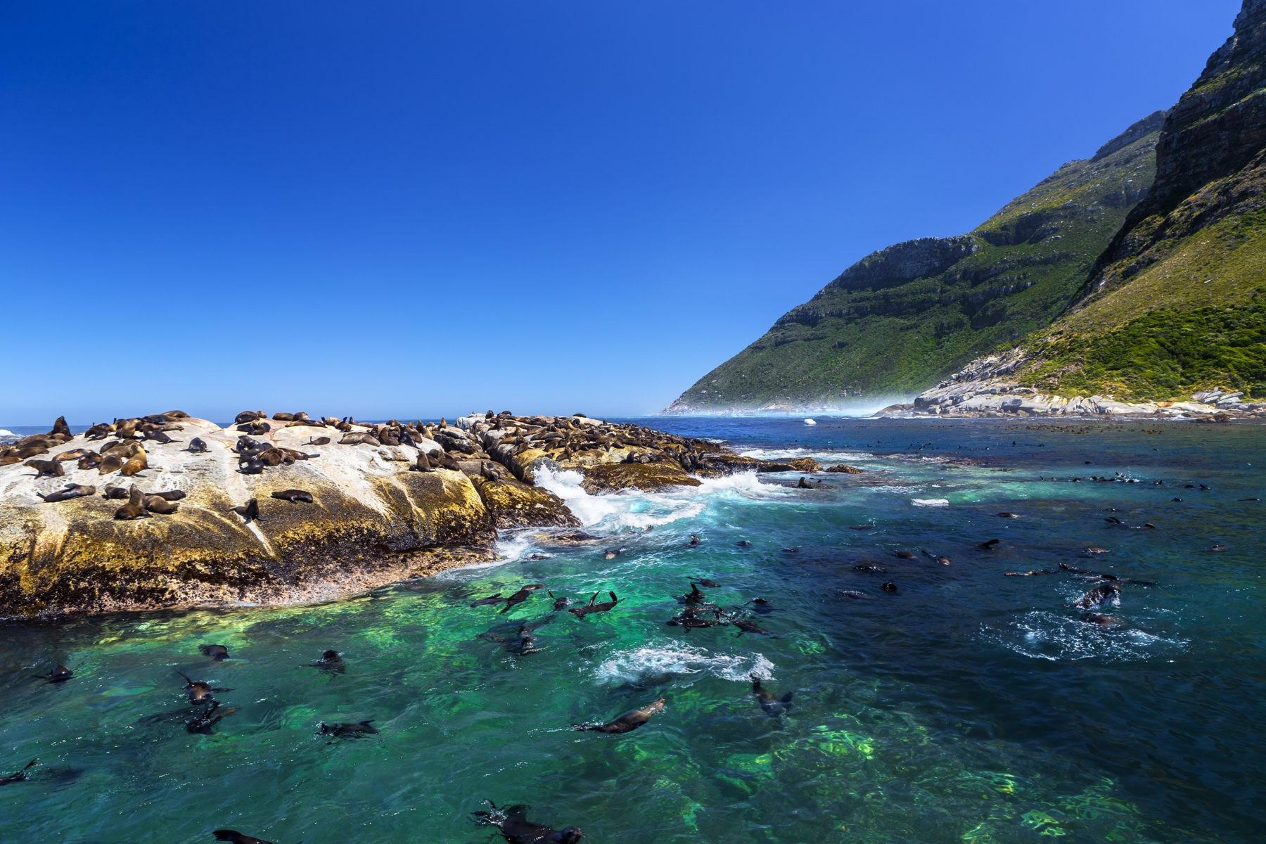 voyages organisés afrique du sud
