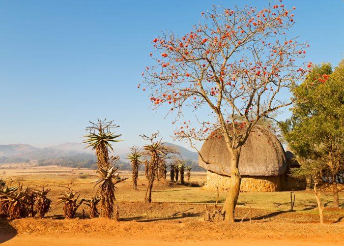 circuits organisés afrique du sud